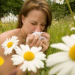 Alergicy – rekomendujemy domenę dla Was